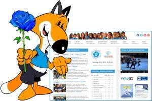 vincent-neue-homepage
