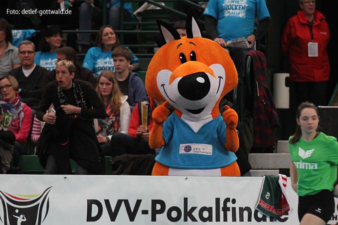 a1338_dvv-pokalfinale_2013-03-03_vcw-schwerin_foto-detlef-gottwald.jpg