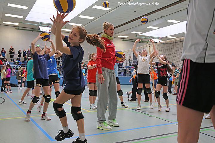 volleyballtraining-mit-stars_2014-02-08_foto-detlef-gottwald-0543a.jpg