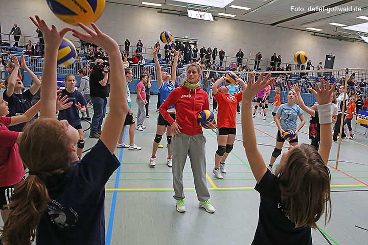 volleyballtraining-mit-stars_2014-02-08_foto-detlef-gottwald-0573a.jpg