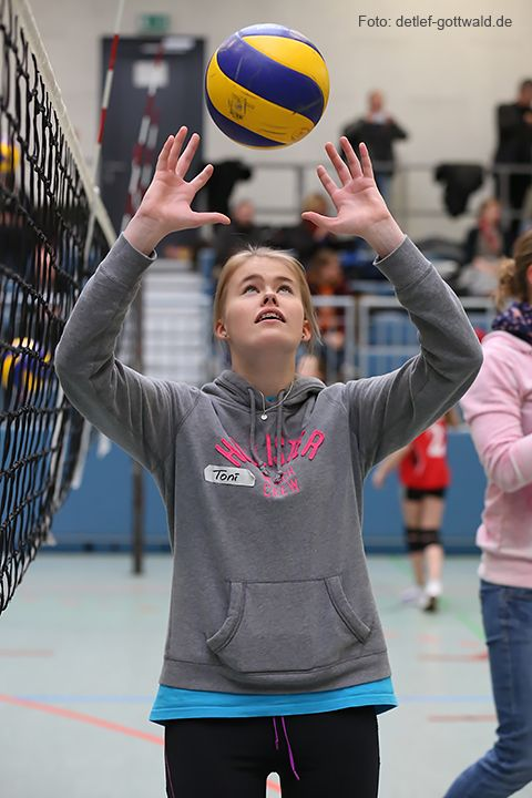 volleyballtraining-mit-stars_2014-02-08_foto-detlef-gottwald-0744a.jpg