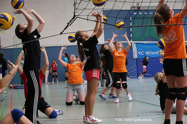volleyballtraining-mit-stars_2014-02-08_foto-detlef-gottwald-0867a.jpg