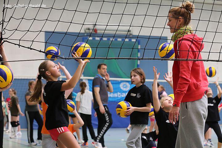 volleyballtraining-mit-stars_2014-02-08_foto-detlef-gottwald-0871a.jpg