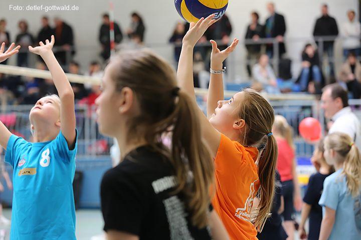 volleyballtraining-mit-stars_2014-02-08_foto-detlef-gottwald-0892a.jpg