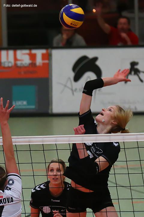 13_volleystarsthueringen-vcwiesbaden_2014-11-29_foto-detlef-gottwald-0146a.jpg