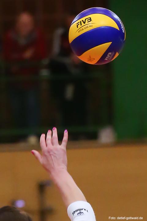 69_volleystarsthueringen-vcwiesbaden_2014-11-29_foto-detlef-gottwald-0679a.jpg
