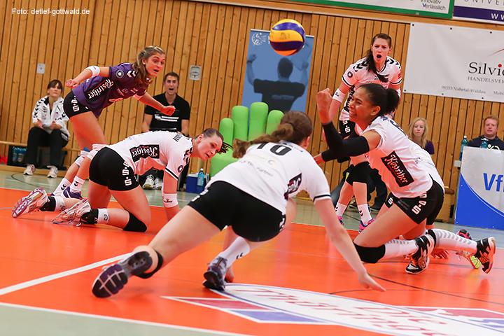 73_volleystarsthueringen-vcwiesbaden_2014-11-29_foto-detlef-gottwald-0787a.jpg