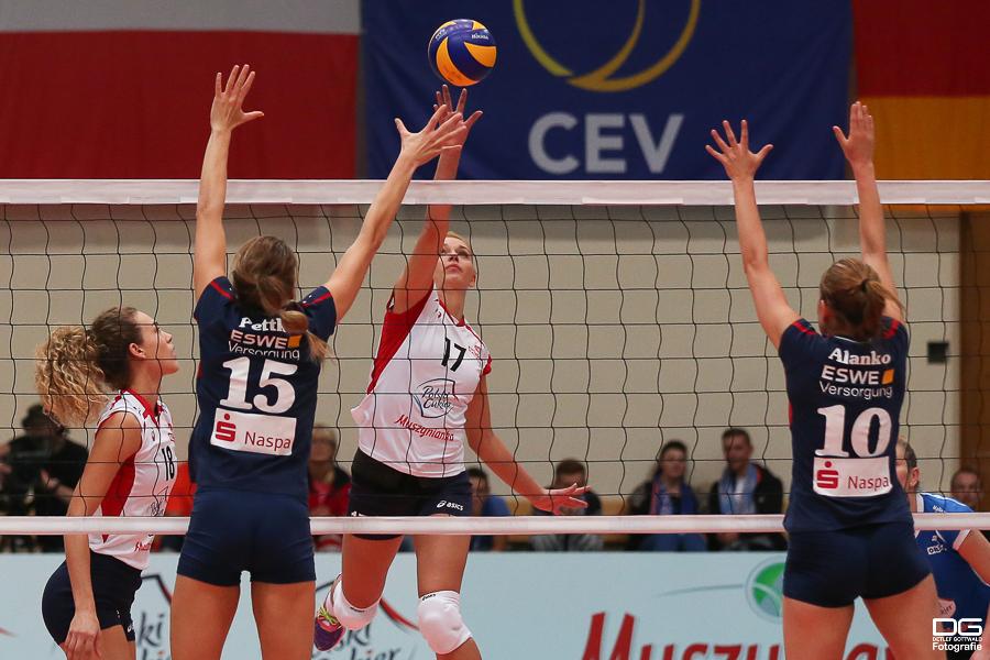 cev-cup_muszyna-vcw_rueckspiel_2015-11-11_foto-detlef-gottwald--25.jpg