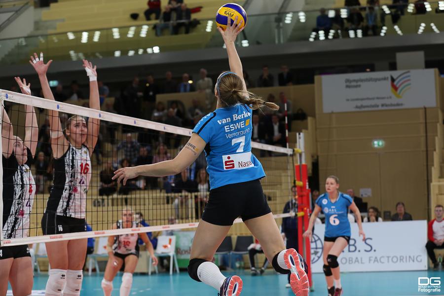029_cev-challenge-cup_vcwiesbaden-minchanka-minsk_2015-12-09_foto-detlef-gottwald_k1-0141a.jpg