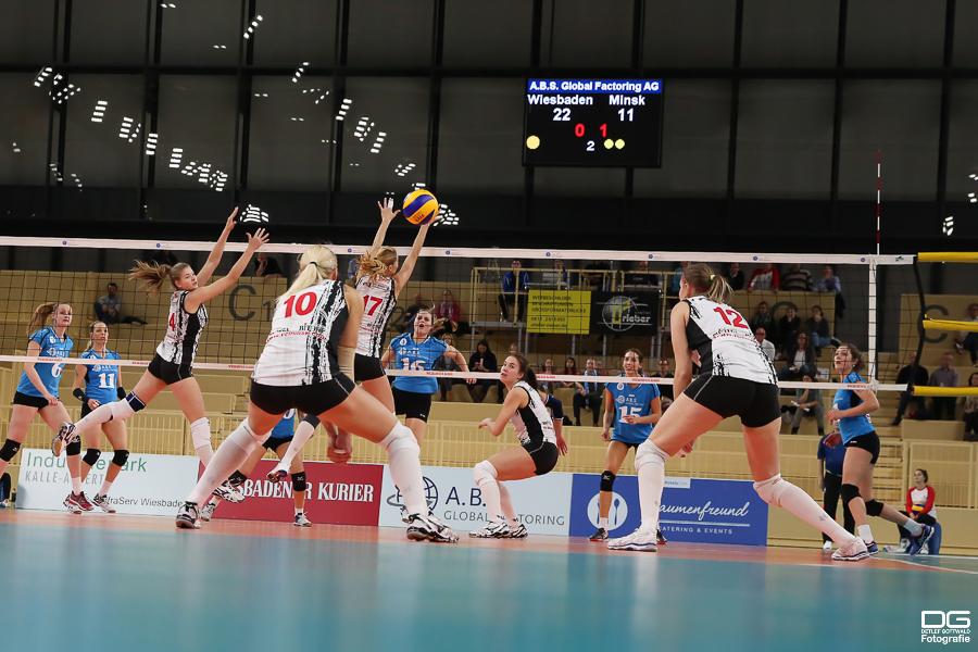 070_cev-challenge-cup_vcwiesbaden-minchanka-minsk_2015-12-09_foto-detlef-gottwald_k2-0103a.jpg