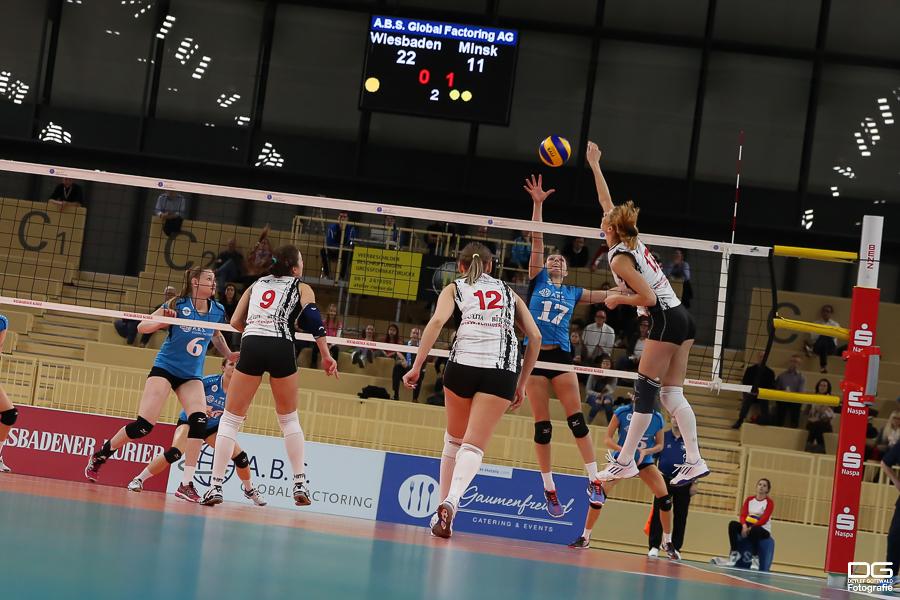 071_cev-challenge-cup_vcwiesbaden-minchanka-minsk_2015-12-09_foto-detlef-gottwald_k2-0104a.jpg