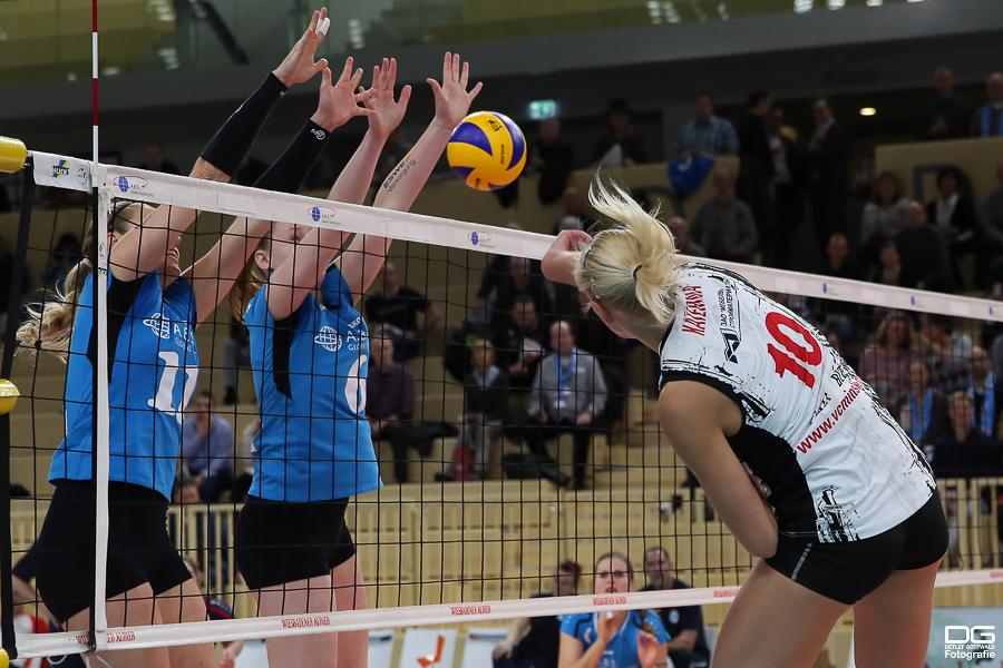 080_cev-challenge-cup_vcwiesbaden-minchanka-minsk_2015-12-09_foto-detlef-gottwald_k2-0079a.jpg