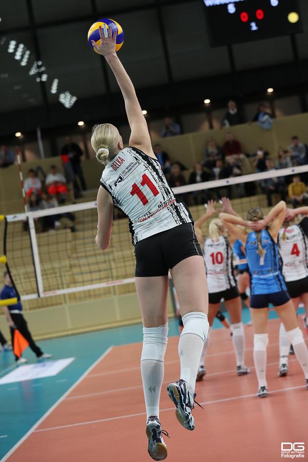 107_cev-challenge-cup_vcwiesbaden-minchanka-minsk_2015-12-09_foto-detlef-gottwald_k1-0054a.jpg
