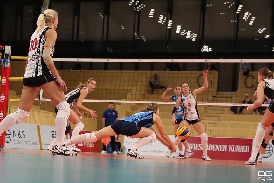 114_cev-challenge-cup_vcwiesbaden-minchanka-minsk_2015-12-09_foto-detlef-gottwald_k2-0097a.jpg