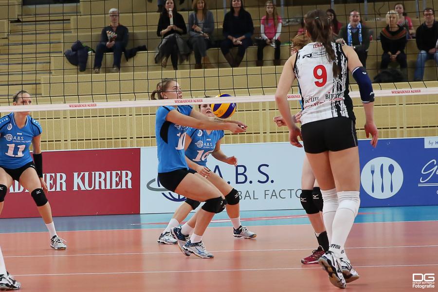 135_cev-challenge-cup_vcwiesbaden-minchanka-minsk_2015-12-09_foto-detlef-gottwald_k2-0091a.jpg