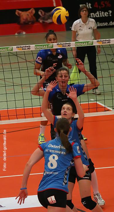 volleystarsthueringen-vcw_2014-02-01_foto-detlef-gottwald-0474a.jpg