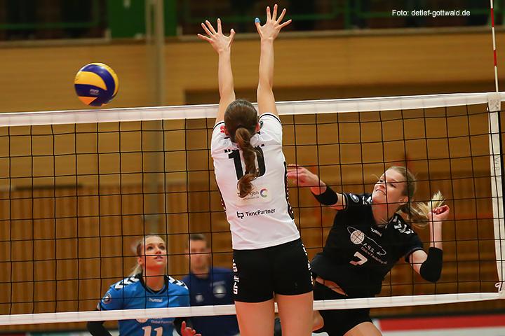 60_volleystarsthueringen-vcwiesbaden_2014-11-29_foto-detlef-gottwald-0627a.jpg