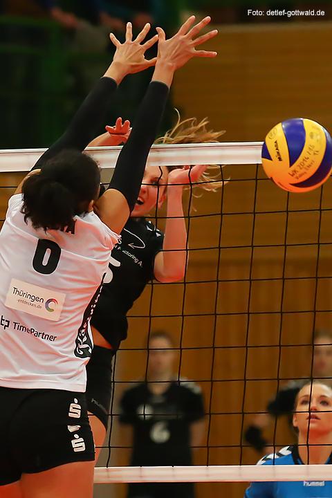 68_volleystarsthueringen-vcwiesbaden_2014-11-29_foto-detlef-gottwald-0692a.jpg