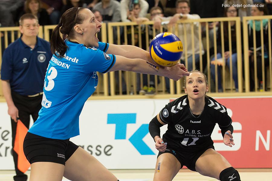 001_vcw-potsdam_2015-03-14_playoff-viertelfinale_foto-detlef-gottwald_k1-1586a.jpg