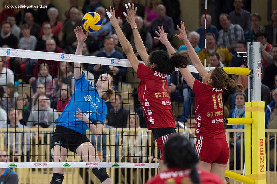 002_vcw-potsdam_2015-03-14_playoff-viertelfinale_foto-detlef-gottwald_k1-1183a.jpg